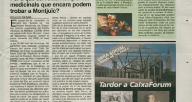 """""""Per a què serveixen les plantes medicinals que encara podem trobar a Montjuïc? (desembre, 2006)"""