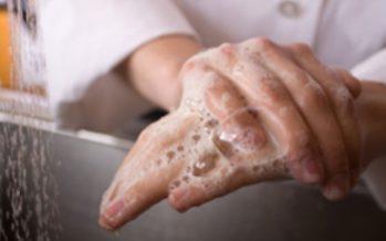 Higiene i conservació d'aliments