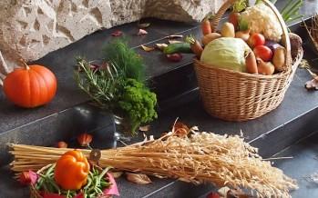 Els aliments de tardor